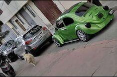 Beetle, Volkswagen, Toys, Car, June Bug, Activity Toys, Automobile, Bugs, Beetles