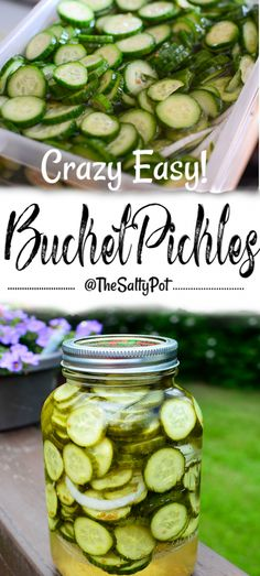 crazy easy bucket pickles (or otherwise known as refrigeration or pail pickles). Sweet and crunchy, tangy and savory. These pickles hit the spot! Spicy Pickles, Canning Pickles, Homemade Pickles, Sweet Pickles, Pickles Recipe, Canning Recipes, Snack Recipes, Canning 101, Pressure Canning