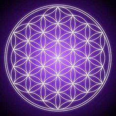 "Flower of life is a symbol with endless secrets and knowledge which was kept hidden by the ""Freemasons"" of ancient Egypt for centuries"