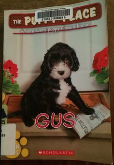 """My little guy ended up choosing """"The Puppy Place: Gus"""" from the library - He is enjoying it, slower read, concepts are a little advanced for my 1st grader, but a good read none-the-less!"""