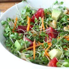 Homegrown Microgreens Salad Recipes.