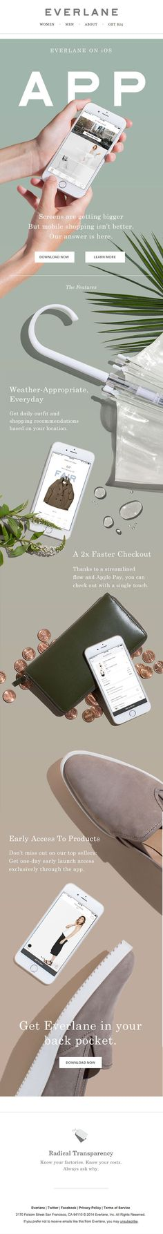 86 best electronic direct mailers images on pinterest design web para news ebooks fandeluxe Images