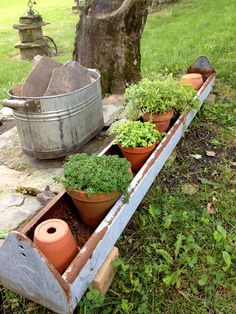 I love vintage and salvaged items in the garden... I found this chicken feeder in the trash!