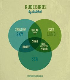 "Stephen Wildish presents THE FRIDAY PROJECT ""Rude Birds."" Classic."