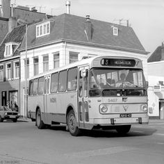Busse, All Over The World, Holland, Camper, Transportation, Tourism, City, Public, Autos