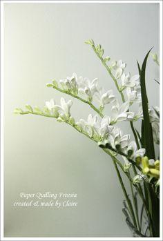 Freesia flower fragrance: Naver Blog