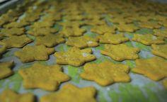 Spicecookies_laboratório-padaria by FERNETO, via Flickr