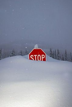 Winter stop sign. This is how it should be!