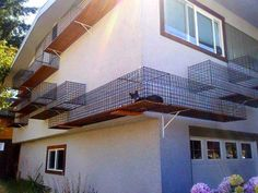 Cat Owner Built an Outdoor Catwalk Around His House in Japan.