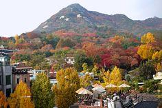 Autumn in Seoul - travel guide on www.anakjajan.com