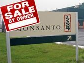 Monsanto insiders dump stock as the truth about GMOs spreads across Wall Street -- Sott.net