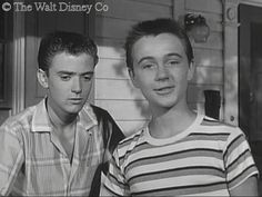 mickey mouse club the hardy boys - Google Search