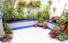 jardin-andaluz-pequeno