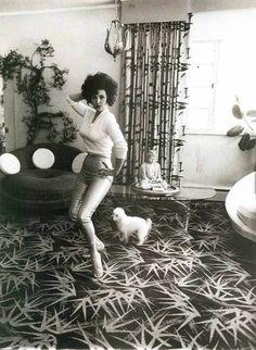 burlesque star Blaze Starr & poodle by Diane Arbus Diane Arbus, Robert Mapplethorpe, Richard Avedon, Old Photos, Vintage Photos, Vintage Modern, Antique Photos, Vintage Stuff, Vintage Posters
