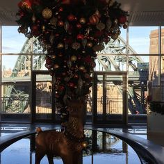Upside down #christmastree at @hiltonnewca
