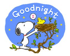 LINE Official Stickers - Sweet Summer Snoopy Animated Stickers Example with GIF Animation Gifs Snoopy, Snoopy Images, Snoopy Pictures, Snoopy Quotes, Cute Good Night, Good Night Gif, Good Night Sweet Dreams, Good Night Image, Baby Snoopy