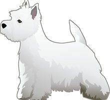 West Highland White Terrier - Westie - Basic Breed Silhouette by TriPodDogDesign