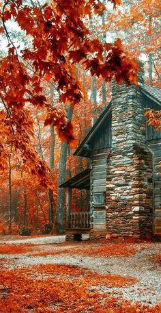 Fall Beauty*