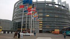 Según los datos de la Unión Europea y BravoSolution, si hiciésemos uso de medios electrónicos en lugar de usar papel en España se podrían ha...