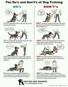 Dog Obedience Hand Signals | Pet Training | Pinterest | Hands ...