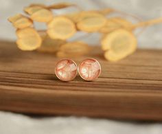 Icy pink ear studs, small hand painted round stud earrings, sterling silver stud posts in jewelry box, light pearly pink jewelry Pink Jewelry, Resin Jewelry, Normcore Fashion, Wooden Jewelry Boxes, Ear Studs, Stud Earrings, Hand Painted, Silver, Painting