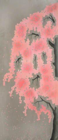Japanese washcloth, Tenugui 福島県三春町にある日本三大桜[三春の滝桜]の手ぬぐい