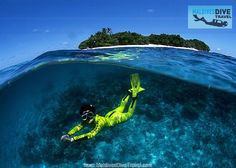 Scuba Diving and Snorkeling Equipment