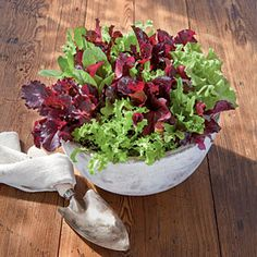 Eat Your Greens (and Reds) | Spectacular Container Gardening Ideas - Southern Living