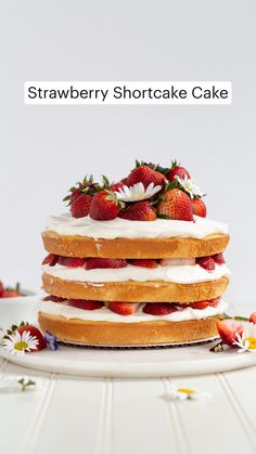 Strawberry Dessert Recipes, Strawberry Shortcake Recipes, Strawberry Shortcake Birthday Cake, Fresh Strawberry Cake, Fresh Fruit Cake, Fruit Cakes, Just Desserts, Delicious Desserts, Yummy Food