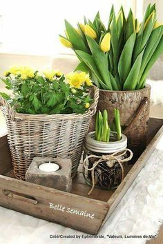 Yellow tulips and other spring flowers in pretty arrangement Deco Floral, Deco Table, Spring Home, Happy Spring, Hello Spring, Spring Flowers, Spring Blooms, Diy Flowers, Fresh Flowers