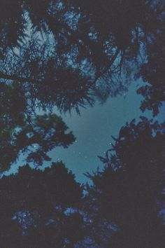 night, grunge, wallpaper, background, beautiful, dark, sky, stars, trees, nature