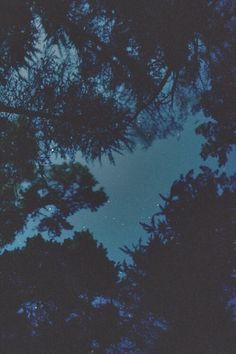 night, grunge, wallpaper, background, beautiful, dark, sky, stars, trees, nature