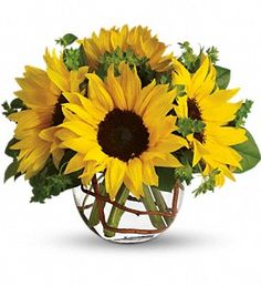 Sunny Sunflowers:  Whoever receives this stunning bouquet is sure to be bowled over by its bold beauty! It's big on fun and big on flowers.    Orange spray roses, yellow sunflowers, curly willow and salal are arranged in a charming ball vase. Order it now to send a ton of sun.