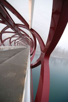 Peace Bridge is a pedestrian bridge, designed by Spanish architect Santiago Calatrava, that accommodates both pedestrians and cyclists crossing the Bow River in Calgary, Alberta, Canada. The bridge opened for use on March Amazing Architecture, Contemporary Architecture, Landscape Architecture, Interior Architecture, Chinese Architecture, Bridges Architecture, Futuristic Architecture, Pavilion Architecture, Santiago Calatrava