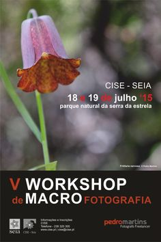 Macrofotografia na Serra da Estrela...em Julho!