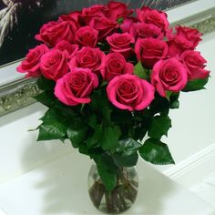 Costco Wholesale Hot Pink Roses 100 Stems