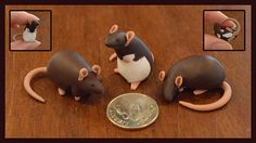 Dime sized Rat Reserved For LittleWolfeh by nEVErmor on Etsy, $28.00