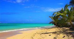 Half Moon Cay, Bahamas. Someday...