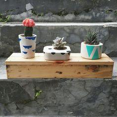 Concrete planters by freyke kosakoy