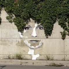 Plant/Wall Art.