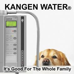 Kangen Water is just not for people it is good for pets as well. Water For Health, Healthy Water, Get Healthy, Kangen Water Benefits, Water Ionizer, True Health, Living Water, Green Life, People Around The World
