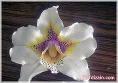Орхидея из ткани. Мастер-класс » Планета рукоделия