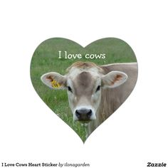 I Love Cows Heart Sticker