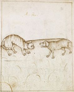 To Agree Like Cat and Dog ca. 1490 (Renaissance)