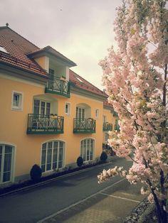 Außenansicht vom AKZENT Hotel Bayerwald-Residenz