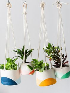 DOMINO:Rad Hanging Planters For When You're Sick of Macrame