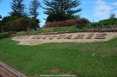 Port Macquarie South Pacific, Pacific Ocean, Port Macquarie, Backyard, Australia, City, Outdoor Decor, Beautiful, Mercury