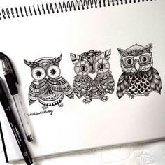 Owls drawings