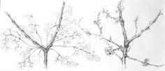 São Mamede - Art Gallery Emilia Nadal Calendários - Inverno-Primavera 154)17 2014 x Canvas 36 cm x 80 cm  #EmiliaNadal #Painting at #SãoMamede #Art #Gallery #artwork
