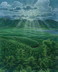 hemp-fields-richard-fields.jpg (724×900)